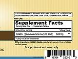 Priority One Vitamins GABA 500 90 Vegetarian