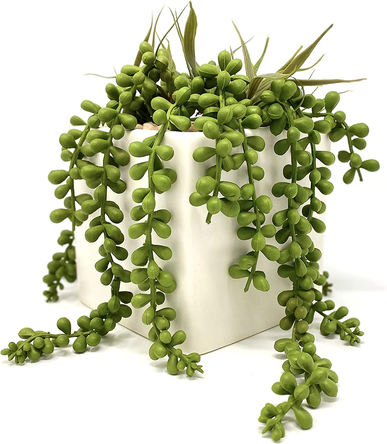Werandah Artificial String of Pearls in Square Pot | Faux Greenery | Decor for Table top, Bookshelf, Dorm Room, Home and Office |