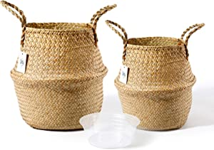POTEY 720101 Seagrass Plant Basket Set of 2 - Hand Woven Belly Basket with Handles, Middle Storage Laundry, Picnic, Plant Pot Cover, Home Decor and Woven Straw Beach Bag (Middle+Large, Original)