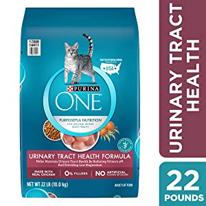 Purina ONE Urinary Tract Health Dry