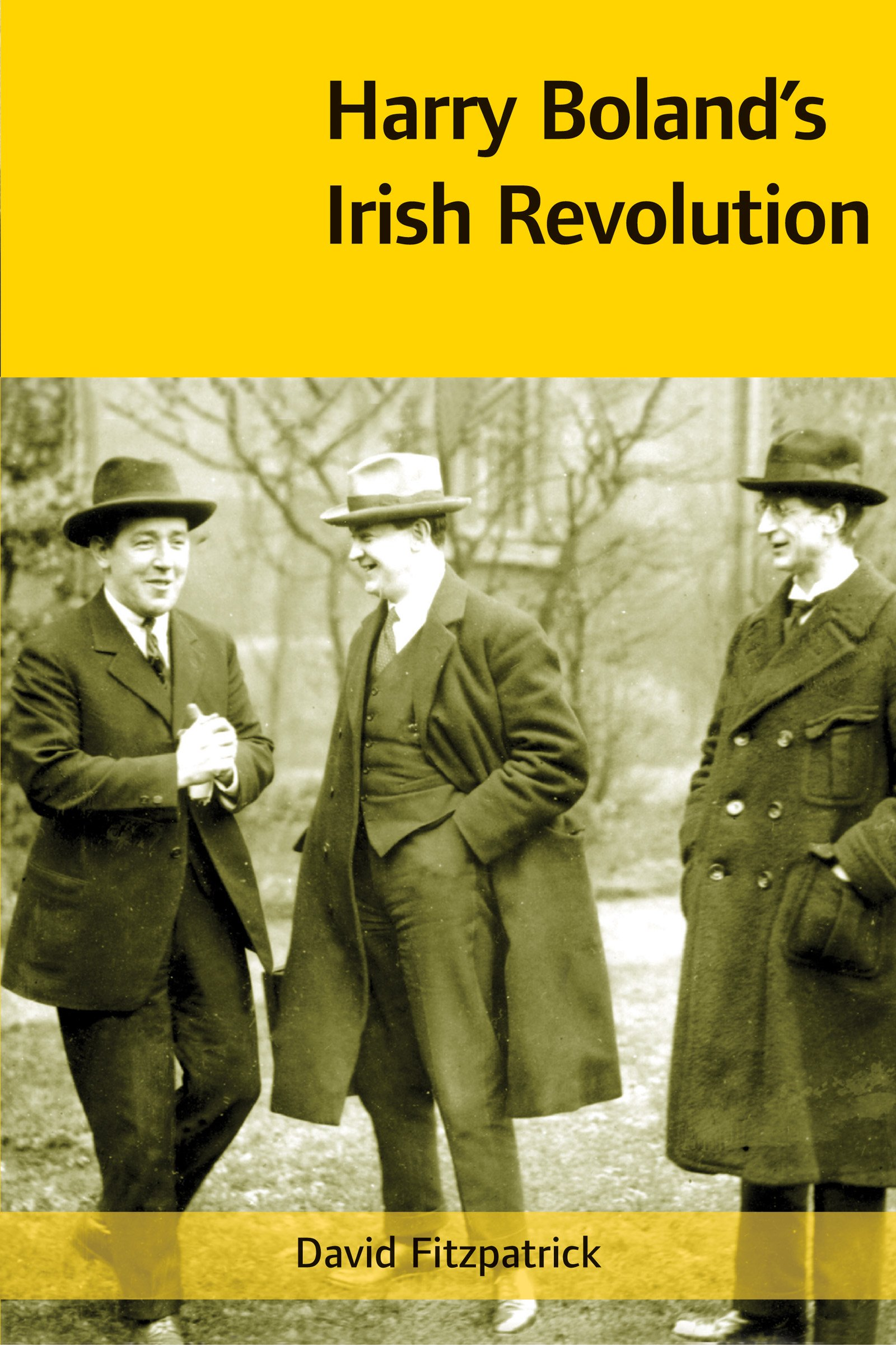 Harry Boland's Irish Revolution, 1887-1922 ebook