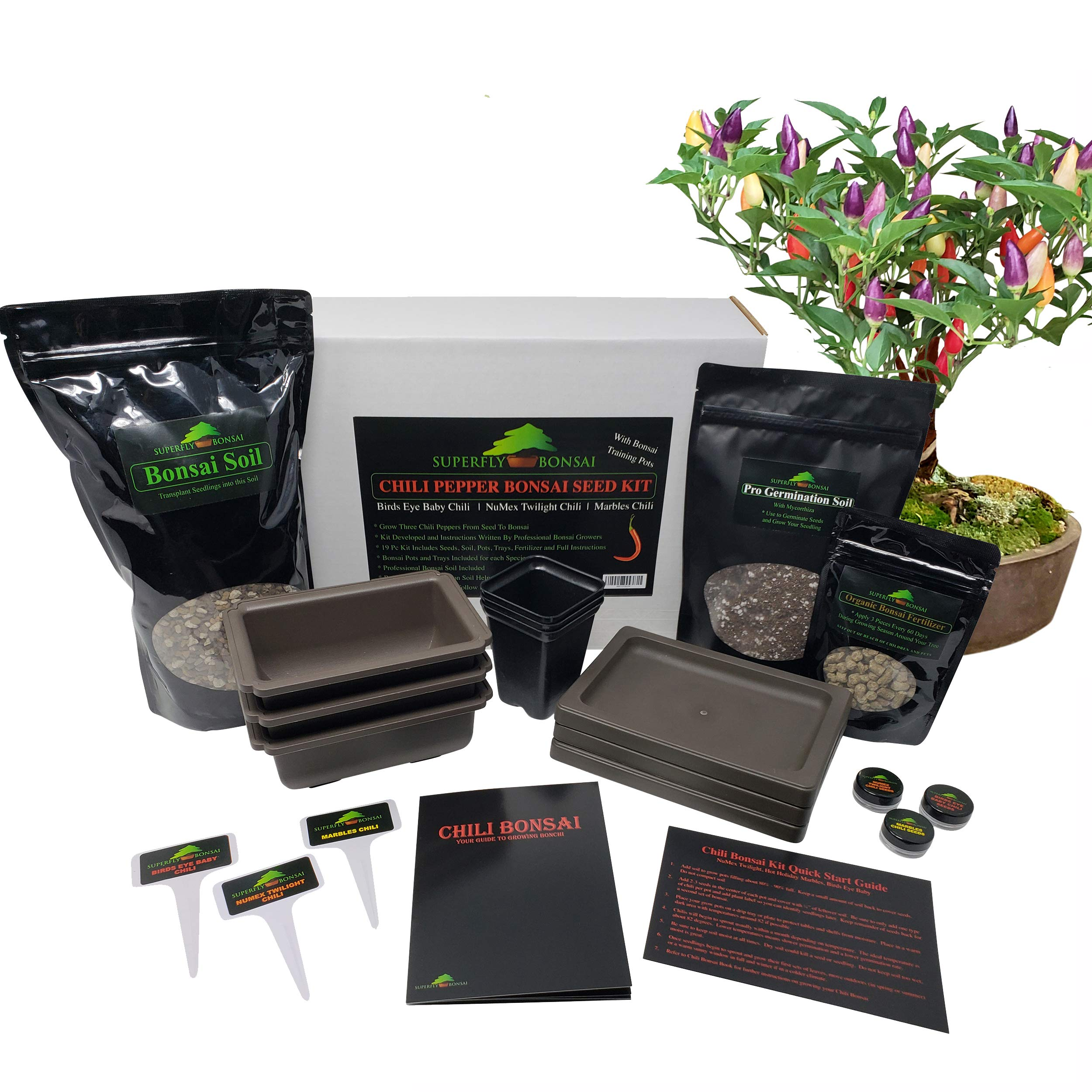 New Chili Bonsai Premium Bonsai Tree Starter Seed Kit - Bonchi Hot Peppers (Chili Bonsai Kit Level 2) by Superfly Bonsai (Image #1)