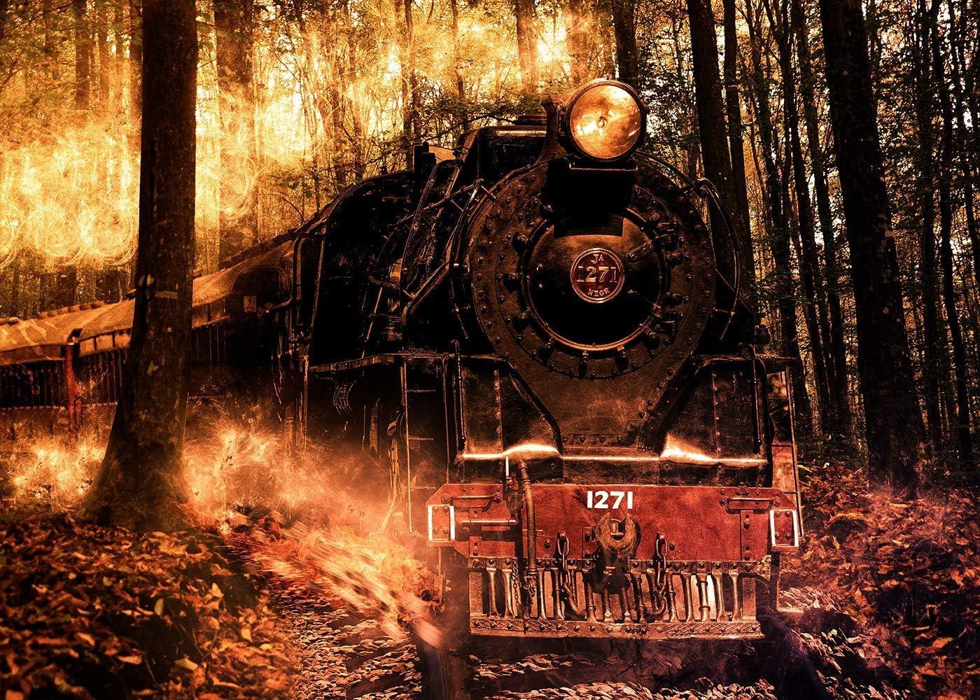 10x8ft Forest Train Background Retro Studio Photography Backdrop Photo Props DSFU147
