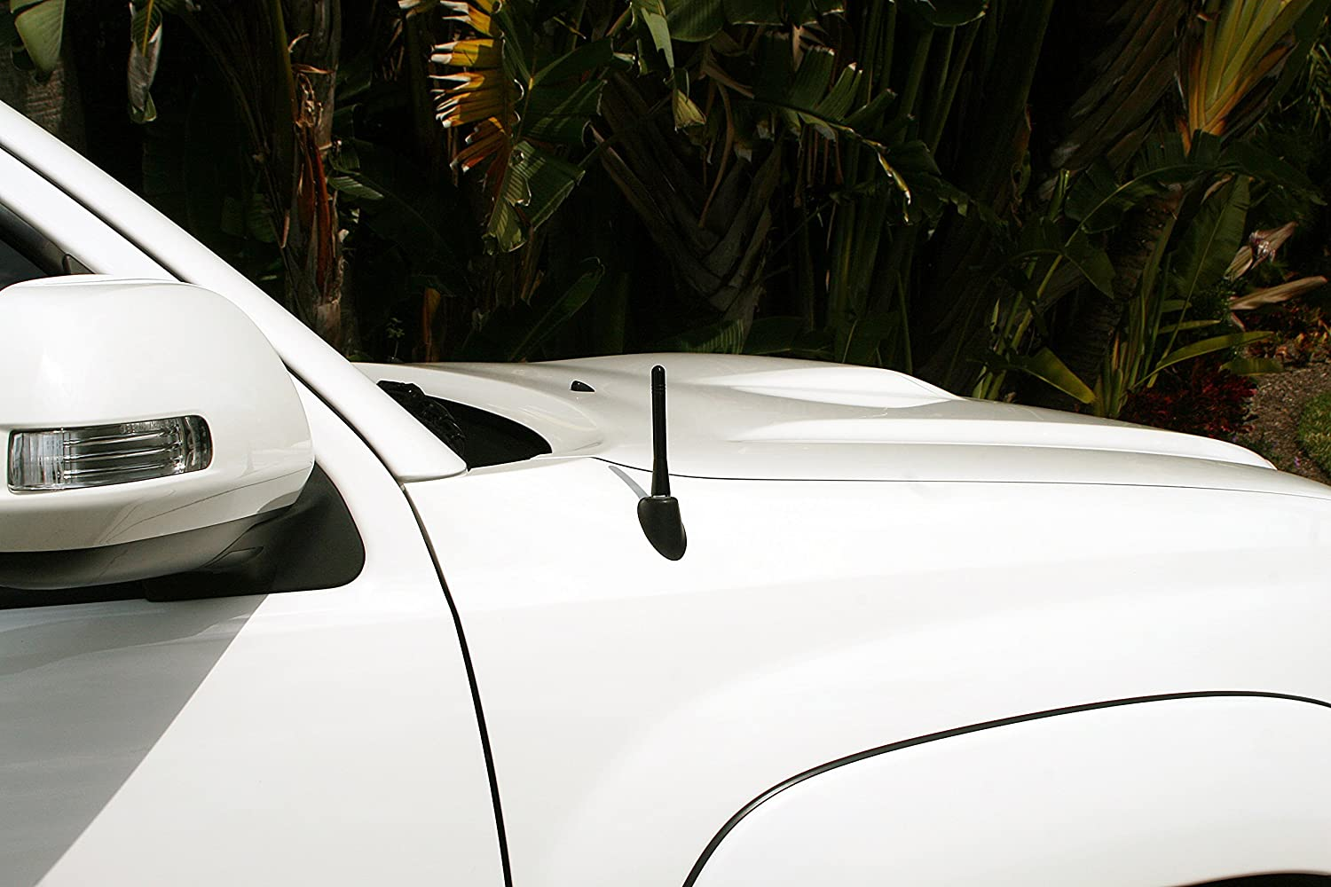 The Spike is Compatible with Ford Thunderbird Black Ammo Antenna with Removable Bottle Opener AntennaMastsRus 1983-1997