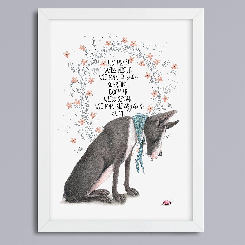 Hund & Liebe\