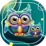 nexus 7 apps - wallpaper owls