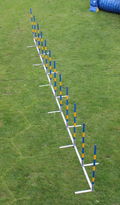 FCI Agility Salom, Callieway® Agi Slalom 12x60cm gerader Agility Slalom / Agility Weaves