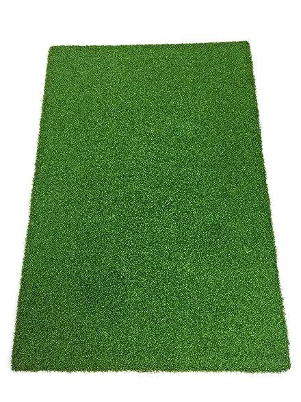 Amazon.com : AllGreen Pacific Professional Portable Golf Putting ...