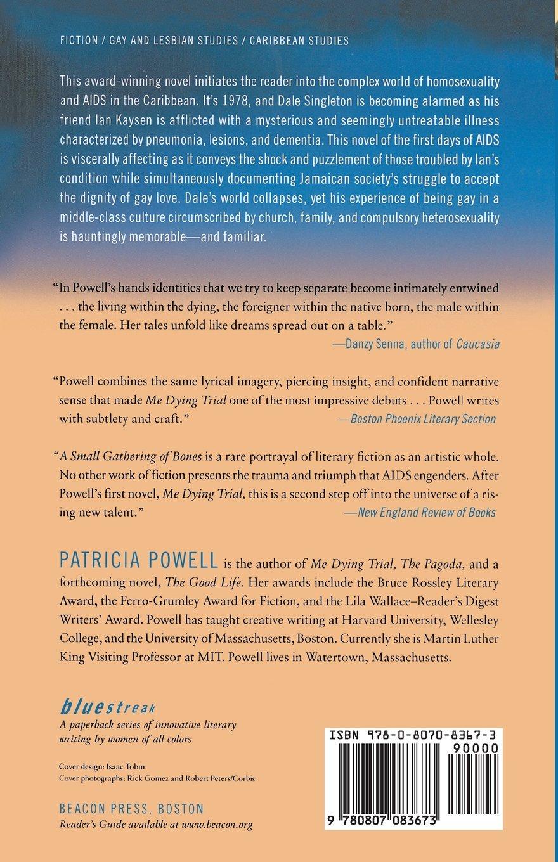 Amazon.com  A Small Gathering of Bones (Bluestreak) (9780807083673)   Patricia Powell  Books cf82c5838a3