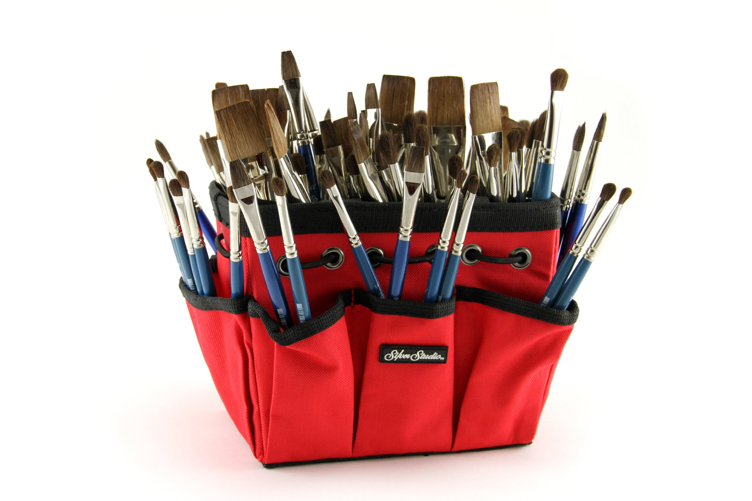 Silver Brush CP-5390S Camel's Short handle Class Pack Hair Assortment with Red Petite Tote, 193 Per Pack