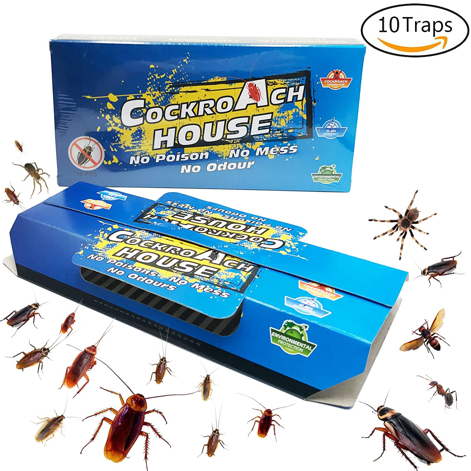 Amazon.com : Becase Cockroach Traps with Bait, Sticky Paper House ...