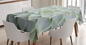 Ambesonne Cactus Decor Tablecloth, Cactus Plant Flower Zoomed Photo Image Desert Mexican Hot Natural Plant Artwork, Dining Room Kitchen Rectangular Table Cover, 60