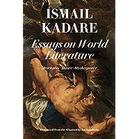 Essays On World Literature