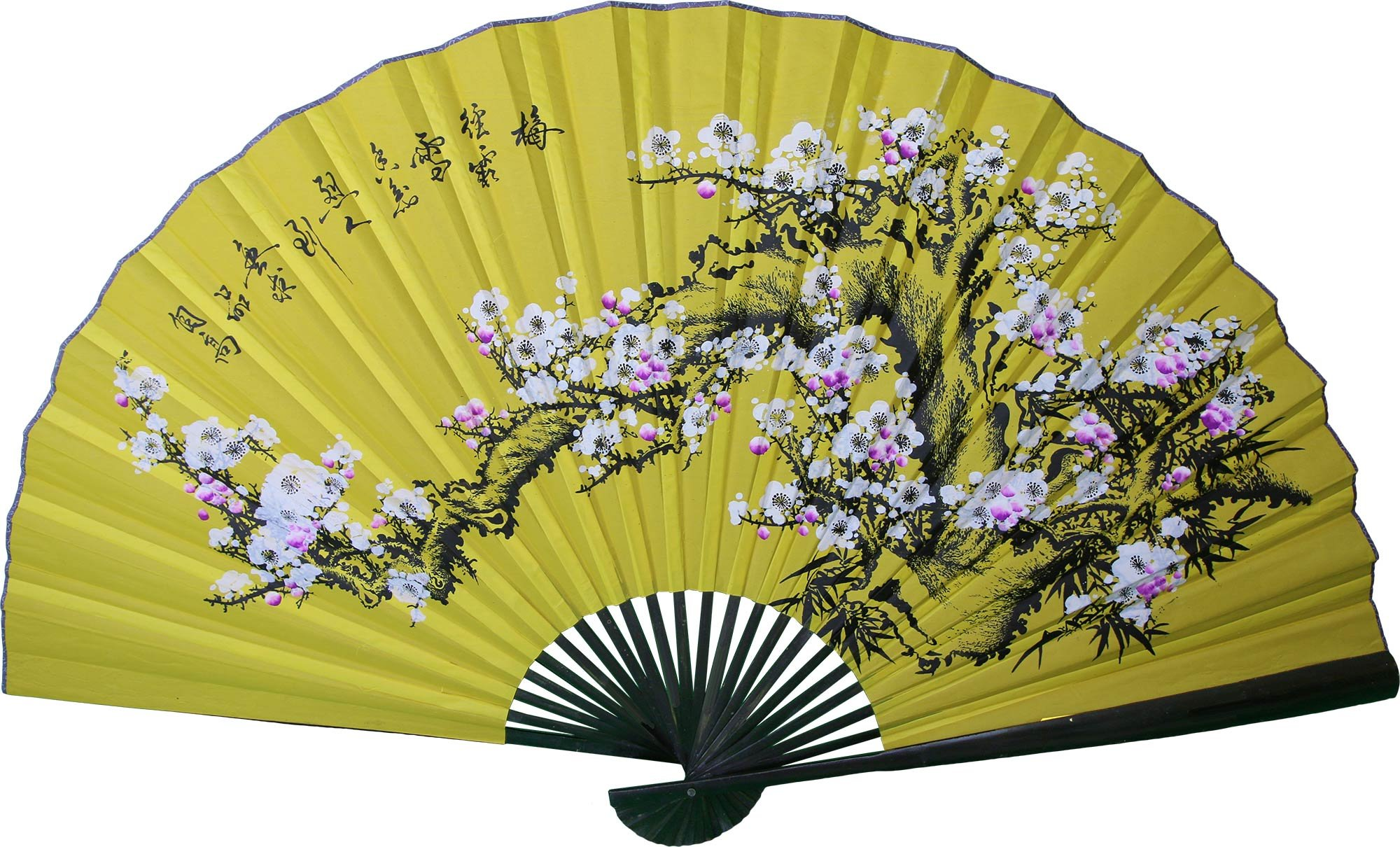 Outstanding Decorative Fans For Walls Image - The Wall Art ...