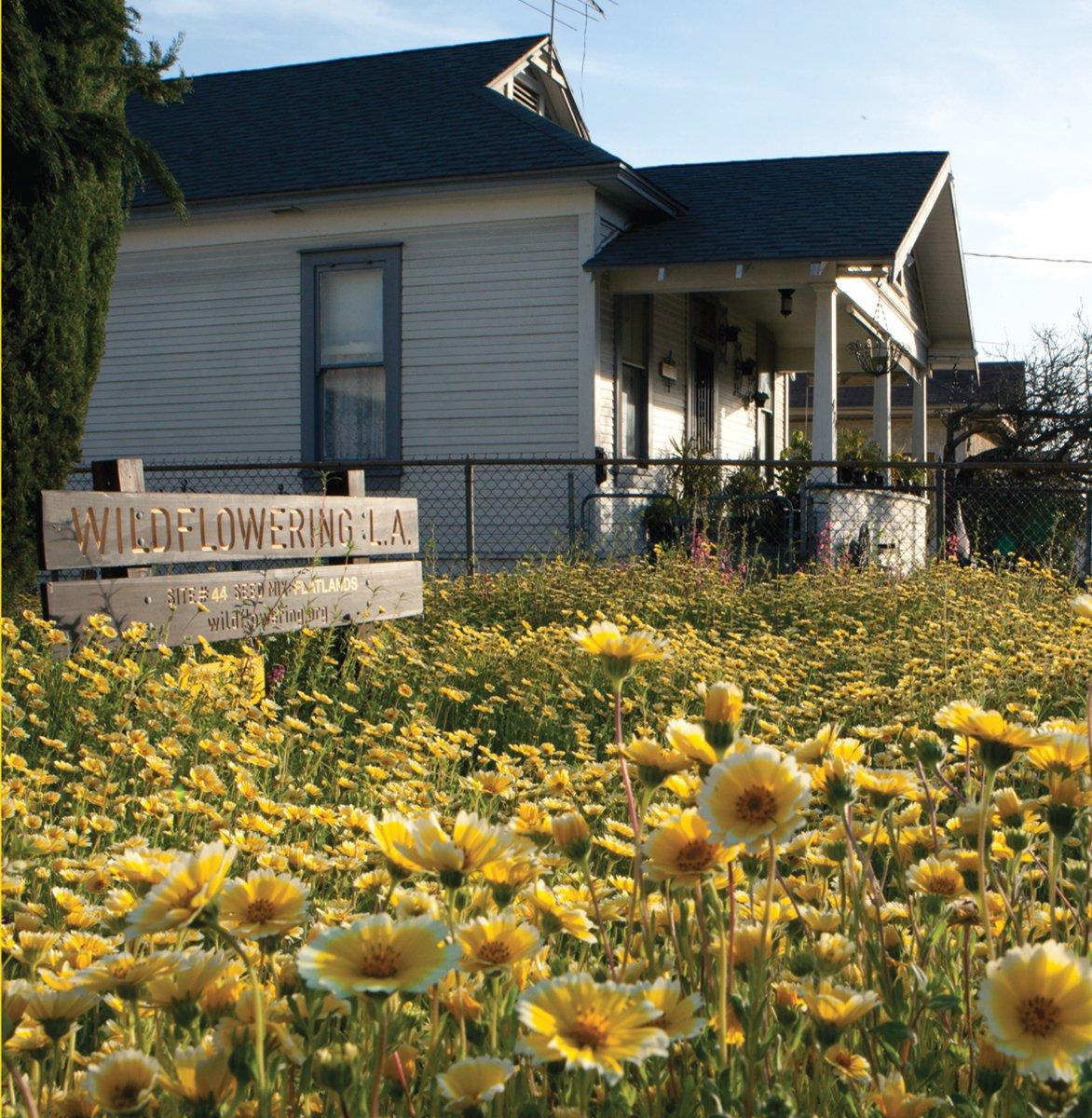 Download Fritz Haeg: Wildflowering L.A. PDF