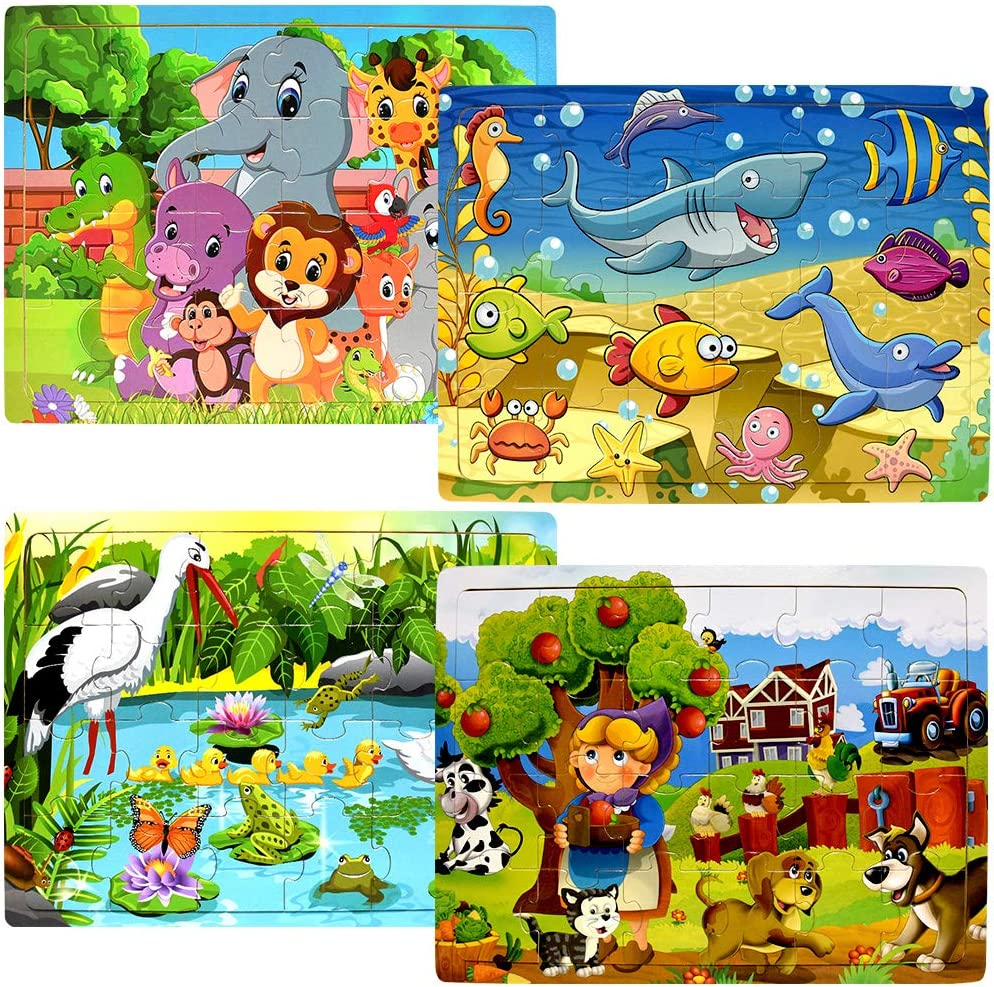 RRIBOUDWAN Wooden Puzzles for Kids Ages 2 3 4 5 Sensory Toys for Toddlers Magnet Puzzle Board for Kids Jurassic Park Dinosaur