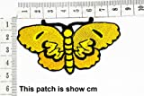 Yellow Butterfly Insect Beautiful Wildlife Design