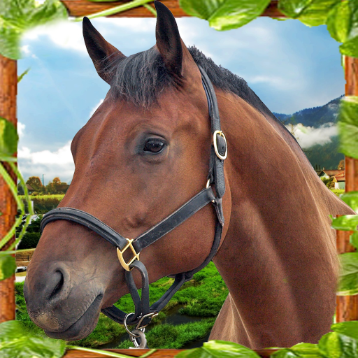 Horse Simulator Unlimited 3D