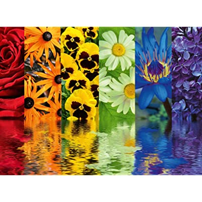 Ravensburger 16446 Floral Reflections 500 Piece Puzzle for Adults - Every Piece is Unique, Softclick Technology Means Pieces Fit Together Perfectly: Toys & Games