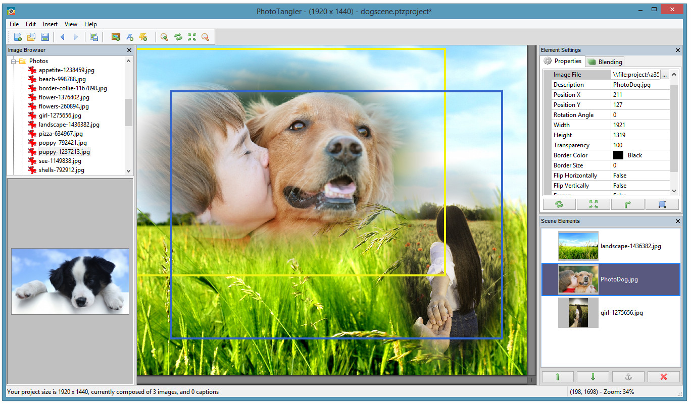 phototangler-collage-maker-download