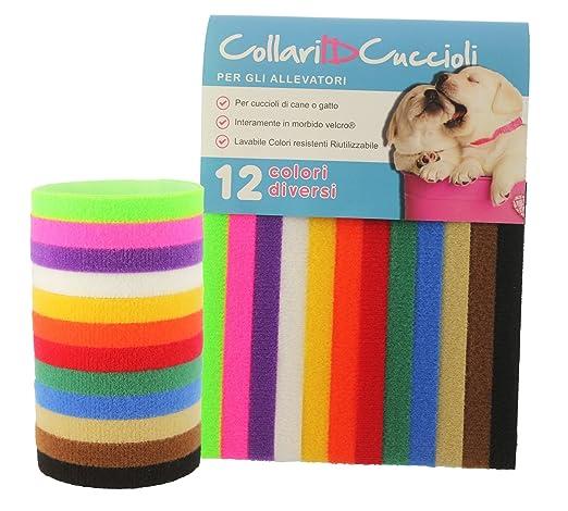 30 opinioni per 12 Colorati Collari ID- Per Cuccioli di cane o gatto- Per gli allevatori