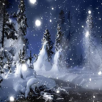 Winter Snow Scenery Live Wallpaper