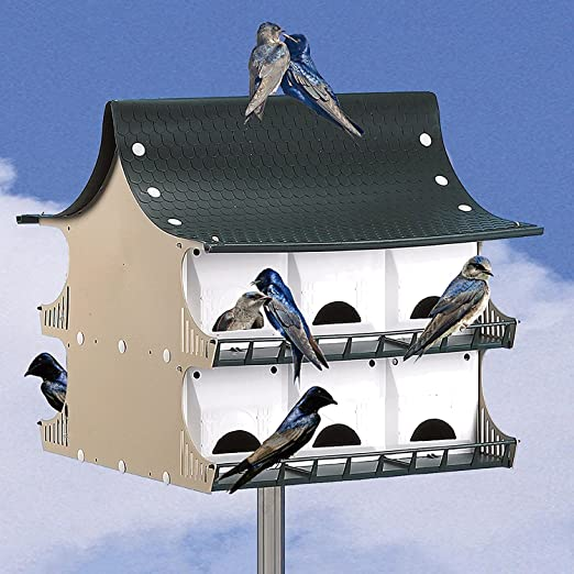 Amazon Com S And K Purple Martin House 12 Room Lawn And Garden Equipment Garden Outdoor