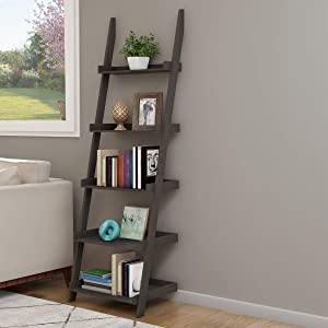 Lavish Home 80-SHF-1 Ladder Bookshelf- 5 Tier Leaning Decorative Shelves for Display, Gray