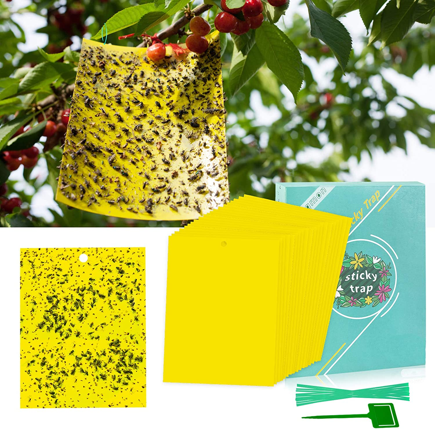 20 Pack 8x6 Inches Fruit Fly Trap Dual-Sided Sticky Traps for Outdoor Fruit Trees/ Potted Plants, Gnat Killer Waterproof and UV Resistant