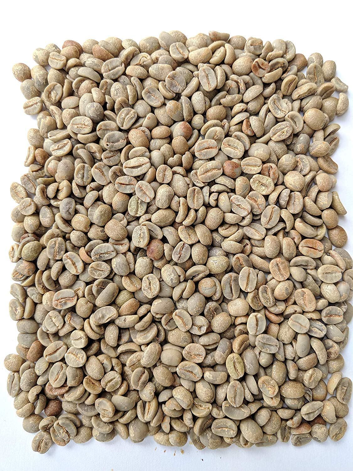 Single Origin Imported Direct from Coffee Producer Specialty Grade 2 Lbs Brazilian Award Winning Grower Unroasted Green Coffee Beans