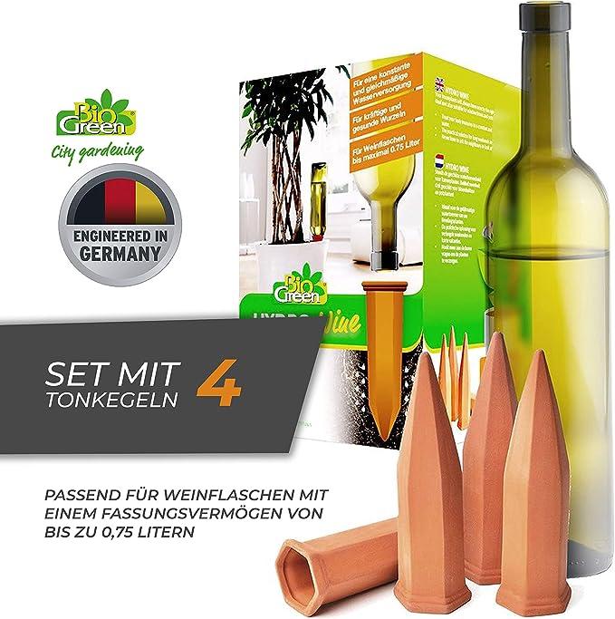 terracotta//grün Bio Green Pflanzen Bewässerung Wine Tonkegel