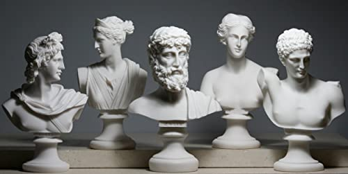 Set 5 Bust Head God Zeus Artemis Aphrodite Hermes Apollo Greek Roman Statue