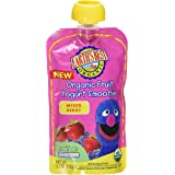 Earth's Best Smoothie Mixed Berry, 4.2-Ounce (Pack of 12)