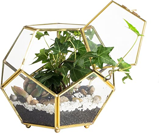 Close Footed oro rame ottone vetro Geometric terrario con
