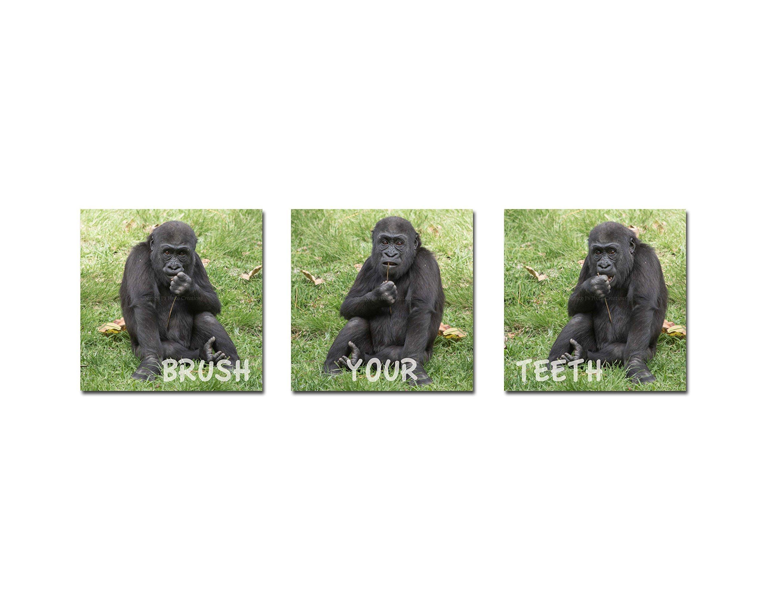 Brush Your Teeth Bathroom Art Set of 3 Baby Animal Prints Cute Gorilla Photo Funny Children's Wall Decor New Parent Unframed Photography Gift 5x5 8x8 10x10 12x12 16x16 20x20