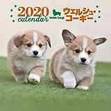 2020年 大判カレンダー ウェルシュ・コーギー