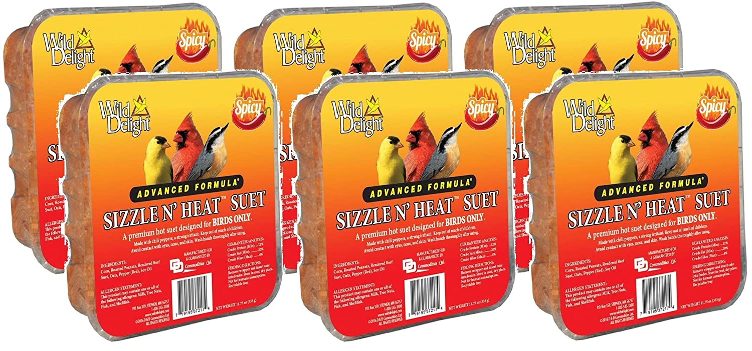 Wild Delight 6 Pack Sizzle N Heat Spicy Suet Birds, 11.75 Ounces Each