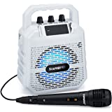 SoundBeast Firebird Karaoke Machine & Portable PA Speaker System For Kids & Adults - With Lights