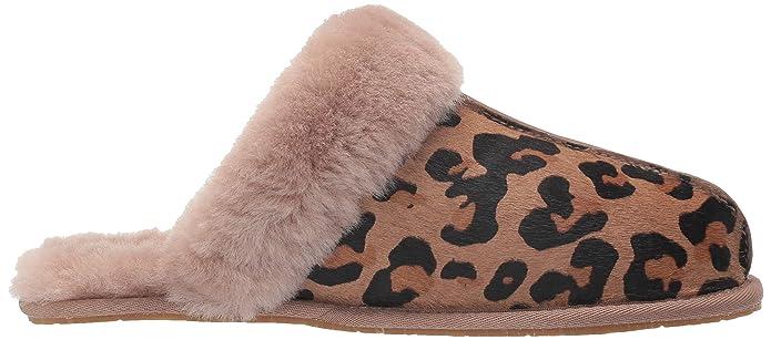 c36ed9eb3d4 Amazon.com | UGG Women's Scuffette Ii Leopard Slipper | Slippers