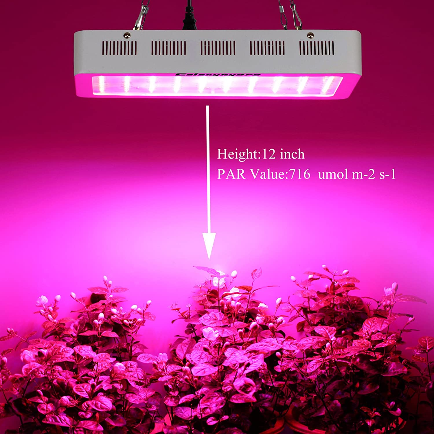 roleadro galaxyhydro 300w led grow light review 420 beginner 89264
