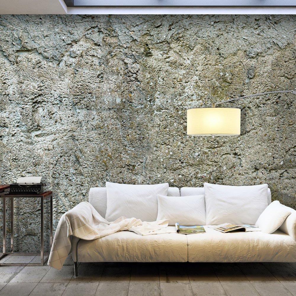 Murando - Fototapete 400x280 cm - Vlies Tapete - Moderne Wanddeko - Design Tapete - Wandtapete - Wand Dekoration - Beton Mauer f-A-0490-a-b
