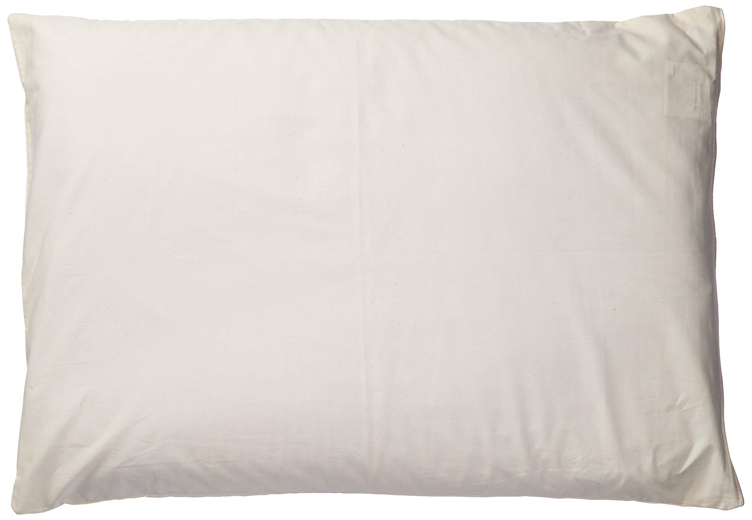 Natures Pillows Sobakawa Buckwheat Pillow With Free Pillow Protective Cover, 19'' x 29''