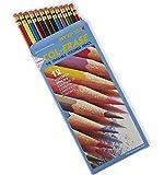 Prismacolor Col-Erase Erasable Colored Pencils, 12-Count