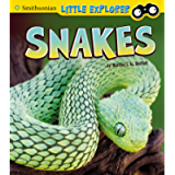 Snakes (Little Scientist)