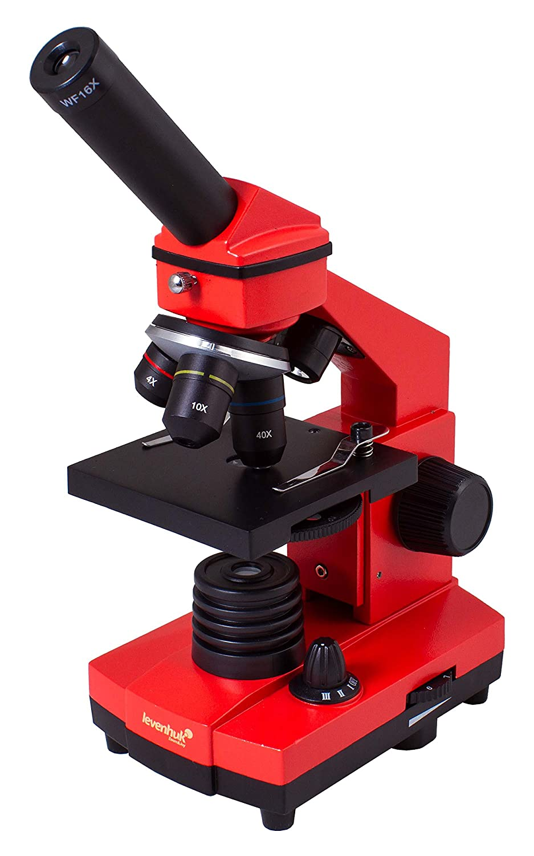 Microscopio Levenhuk Rainbow 2L Plus AmethystAmatista
