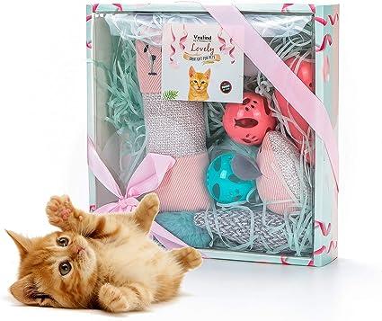 Vealind Juguete Interactivo para Gatos, colección de Juguetes para Gatos, en Hermosa Caja de Regalo: Amazon.es: Productos para mascotas