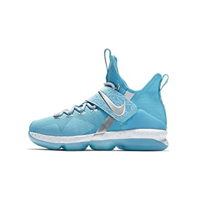 f1f917ef4b9 Image Unavailable. Image not available for. Color  Nike Big Kids Lebron XIV  HXC Shoe