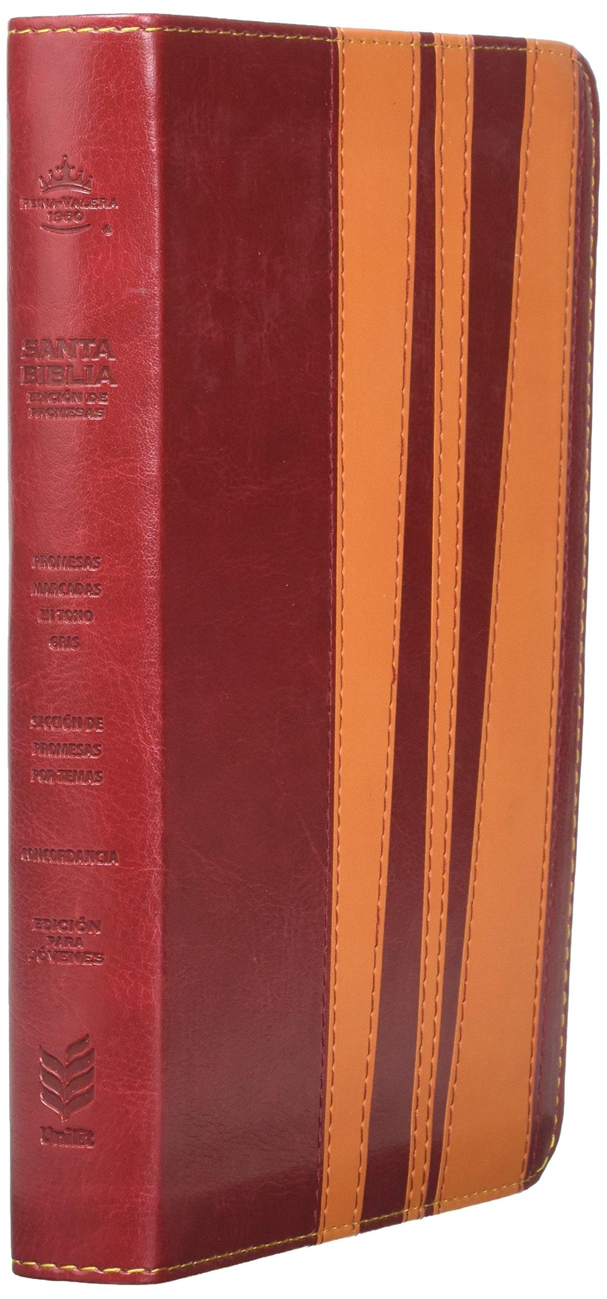 Biblia de prom/2 tones/juvenil/hombres (Spanish Edition): Rv ...