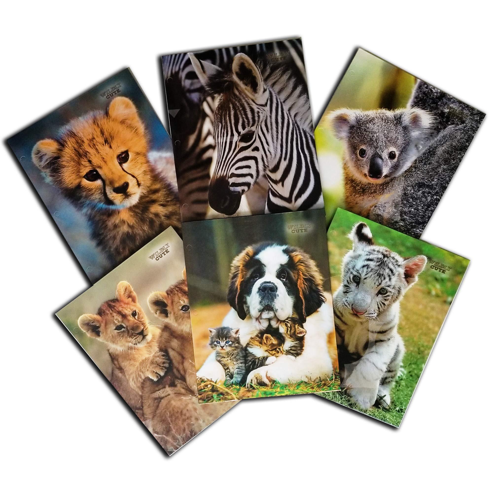 Cute N Cuddly School Folders - Back to School Supplies - 6 School Folder Variety Includes - Lion Cubs, Cheetah Cub, Tiger Cub, Dog and Kitties, Koala, and Zebra