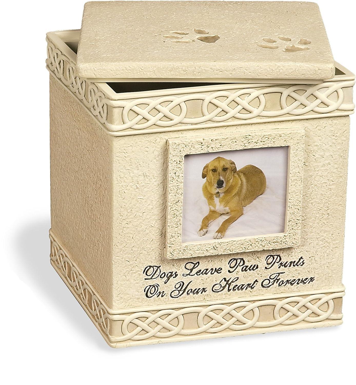 Angel Star Dog Paw Prints Keepsake Box With Small Photo Frame Metal